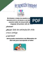 Afiche a Taller de Desarrollo Motor y Lenguaje