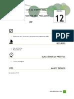 Práctica N°12_MRP (1)