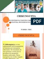 chikungunya-diapo