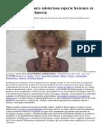 Hallan ADN de Una Misteriosa Especie Humana en Nativos de La Melanesia