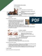 Geronto.pdf