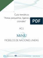 AG1 Armas Pequeñas, Ligeras y Convencionales(1)