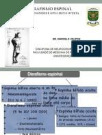Aula Disrafismo Fisio FMRP-USP Março 2016.compressed
