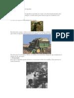 Proceso de Extraccion del algodón.docx
