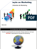 3 .Os Ambientes de Marketing - Macroambiente e Microambiente