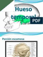 anatomia lab.-1.pptx
