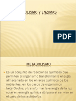 metabolismoyenzimas-100709194817-phpapp02