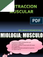 6. Contraccion Muscular