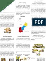 Gatronomia Region Los Andes