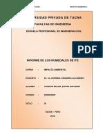 114351885-Humedales-de-Ite.docx