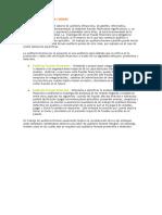 Definición de Auditoría Forense