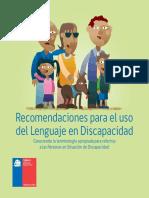 Recomendaciones Uso Del Lenguaje 2015