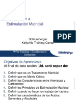 23. Intro a Estimulación Matricial
