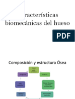 Biomecanica de Los Tejidos