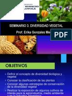Seminario III. Diversidad Vegetal-2016-i - Copia