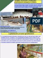 D_Martinez_Carrera_pp.pdf