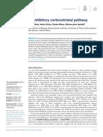 An Inhibitory Corticostriatal Pathway