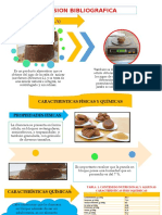reviision-bibliografica-y-metodologia-diapos.pptx