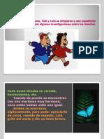 historiatolerancia-091215004016-phpapp02