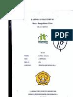 Laporan Praktikum 3 Pcd Akhbar Arianda