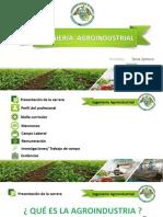 Ing. Agroindustrial