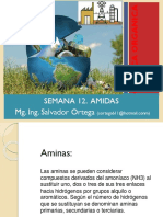 SESION_12_AMIDAS