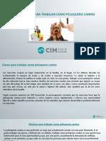 CIM Formación - Claves Para Trabajar Como Peluquero Canino