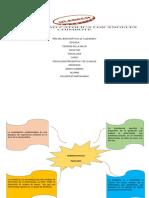 Psicologia Preventiva y de Salud