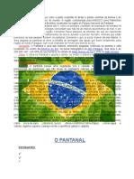 É Uma Planície Aluvial Que Cobre a Parte Ocidental Do Brasil e Partes Vizinhas Da Bolívia e Do Paraguai