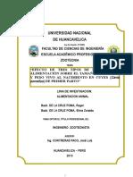 Universidad Nacional de Huancavelica Tesis ing zoot