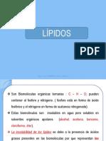 lipidos 2015ok