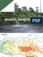 Mawlynnong - Community based eco tourism village