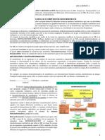 Biotransformaciones de Los Compuestos Xenobioticos
