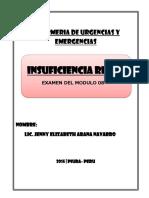 8. Insuficiencia Renal