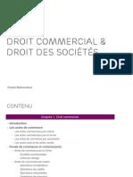 Droit Commercial Droit Des Soci t s Chapitres 1 3
