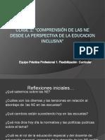 Clase 1 NEE desde la perspectiva de la Educaciòn Inclusiva PP1 2017