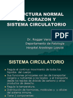 1 Estructura Normal Del Corazon y Sistema Circulatorio