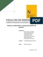ensayos-terminado-puentes.docx