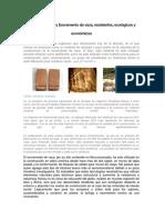 Adobe de Excremento de Arcilla