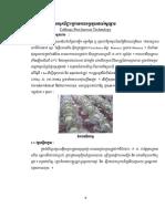 9.Harvesting Cabbage