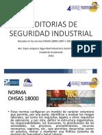 Auditorias de Seguridad Industrial.