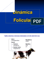 2. Dinámica Folicular.charla