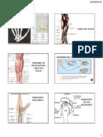 Diapos Del Examen de Anatomia Para Residentes - 2013