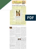 pelican_1706_96 (1)