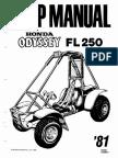 FL250-Manual.pdf