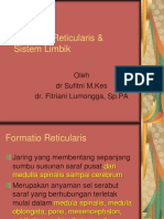 K - 1 & K - 2 Formatio Reticularis & Sistem Limbik (Anatomi)