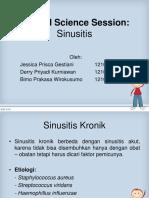CSS 3 - Sinusitis (Bimo-Derry-jessica)