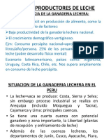 VACUNOS(clase) (1).ppt