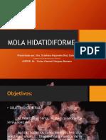 molahidatidiforme-140518160735-phpapp02