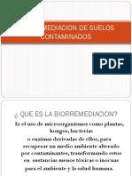 Diapositivas Biorremediacion de Suelos Contaminados1
